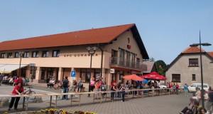 borovnice3-2013