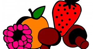 logo Cesta plodova copy