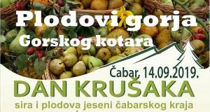 DAN KRUŠAKA2019-banner